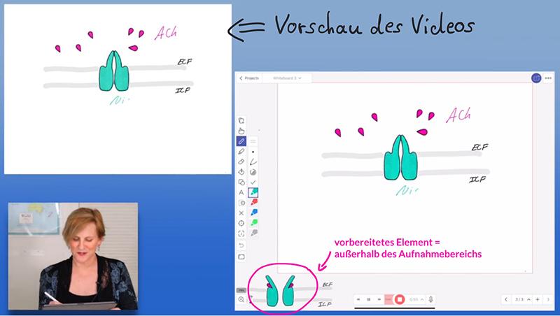 "Beispiel für den ""Stealth Mode"" - Screenshot aus dem Tutorial ""EDU Tech: How to Record Drawing Tutorials (Explain Everything App Demo"""
